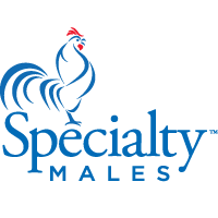 Specialty Males